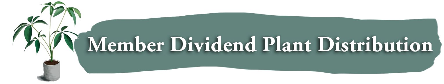 Member Dividends Plant Distribution
