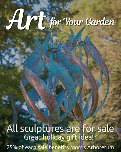 Morris Arboretum In Motion: About The Artist And Installation